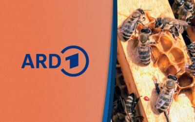 ARD – Europa Magazin – 30/05/2021