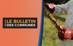 Capturs sur le Bulletin des Communes