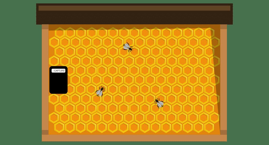 Traceur GPS adapté aux cadres des ruches
