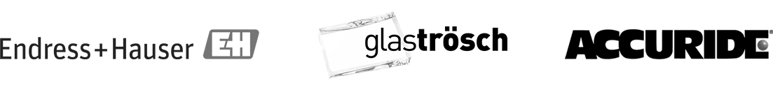 Endress Hauser Glas Trosch Accuride